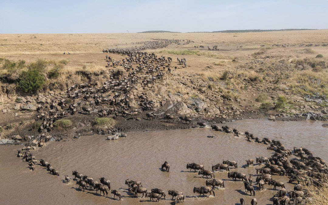 Gran Migración en el Masai Mara
